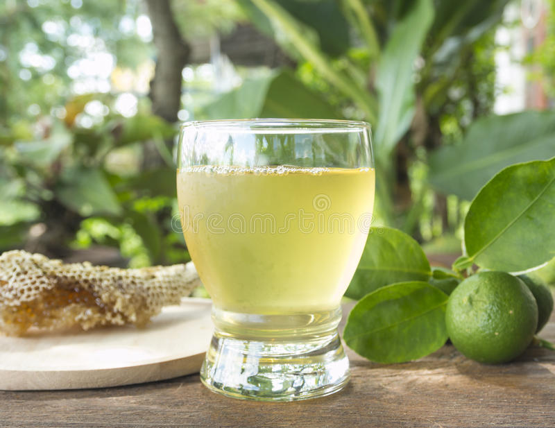 Чай с медом и лимоном стоковая фотография rf