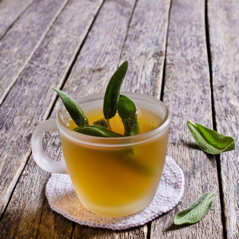 Чай с мудрыми листьями стоковая фотография