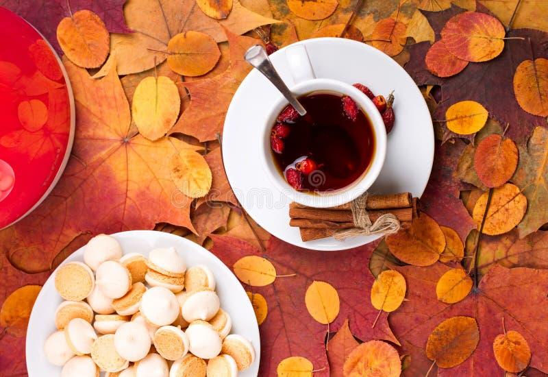 Чай с печеньями на предпосылке листьев осени стоковая фотография rf