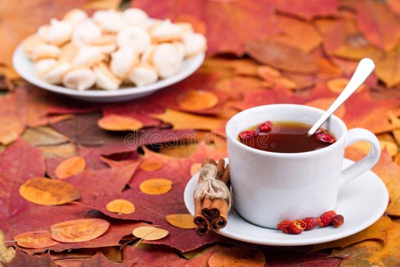 Чай с печеньями на предпосылке листьев осени стоковая фотография