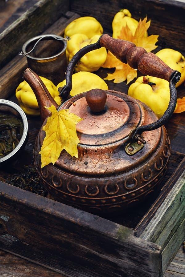 Чай с свежей айвой стоковая фотография rf