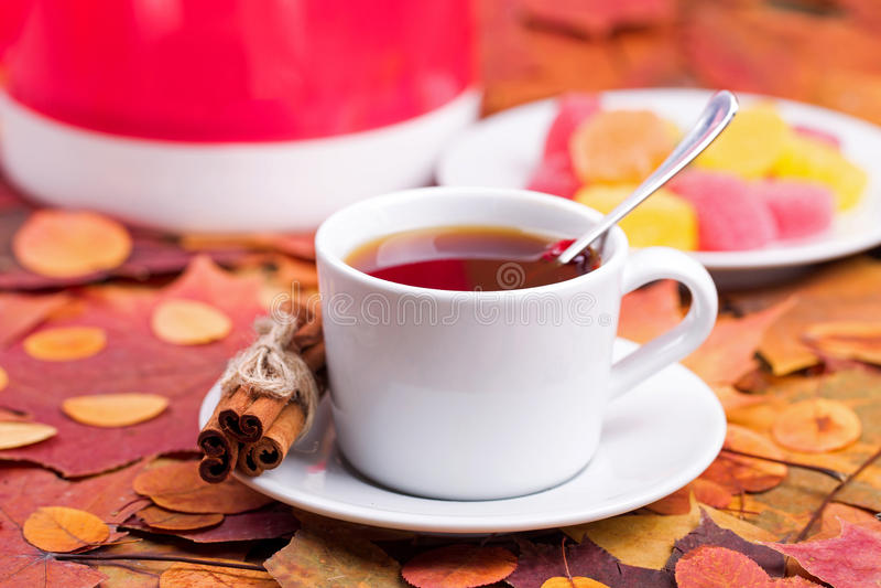 Чай с студнем плодоовощ листья иллюстрации компьютера предпосылки осени стоковое изображение