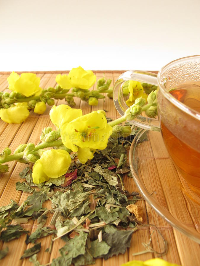 Чай с цветками mullein стоковые фотографии rf
