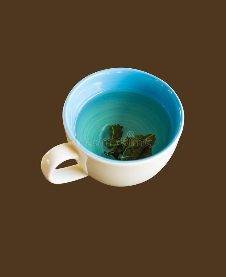 чай чашки зеленый горячий стоковые фото