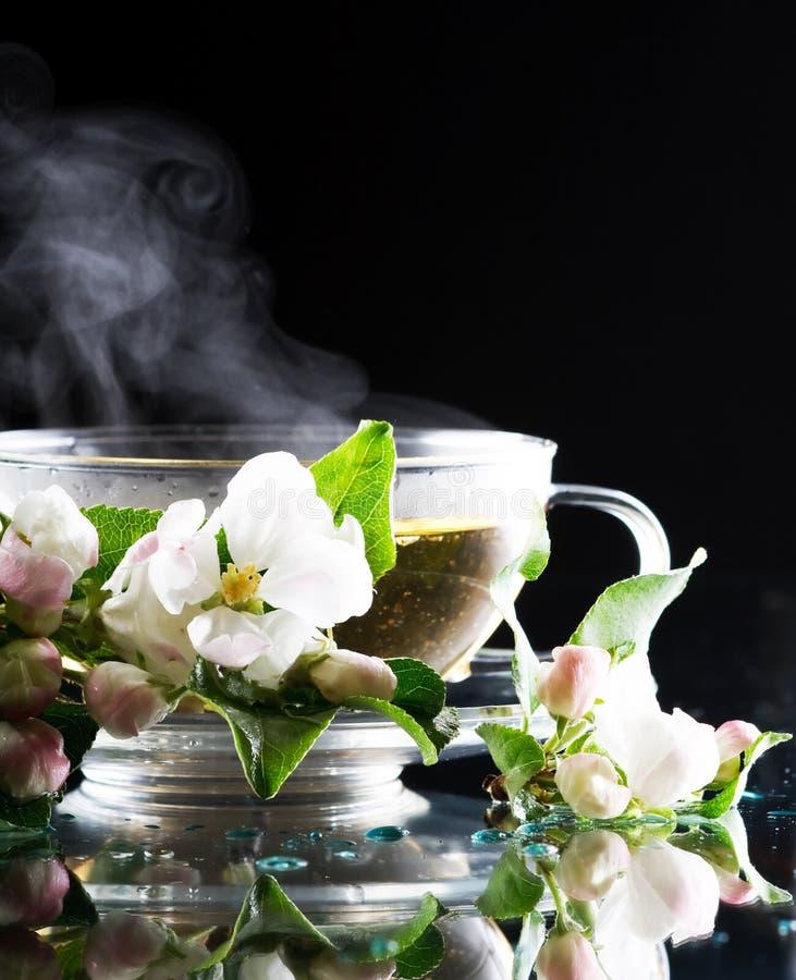 чай яблока стоковое изображение