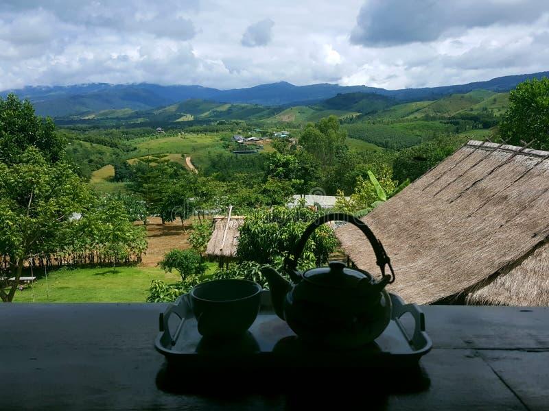 Чай стоковая фотография rf