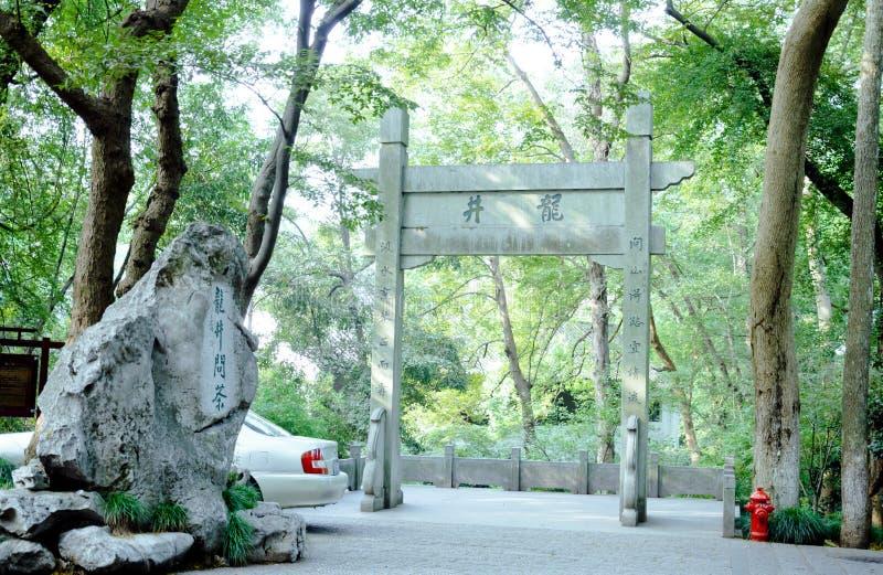 Чай Longjing места происхождения зеленый стоковая фотография