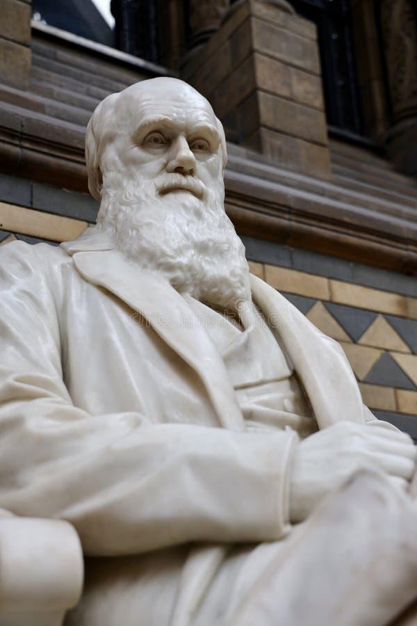 Чарльз Дарвин & x27; статуя s стоковые фотографии rf