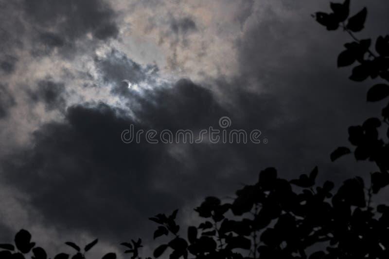 Частично солнечное затмение через темные облака с силуэтом дерева стоковые фотографии rf