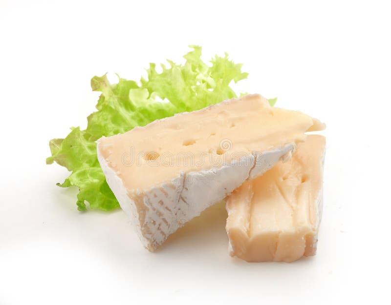 Части камамбера с салатом стоковая фотография rf