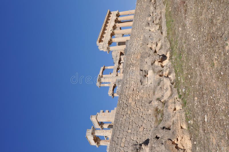 Греческий стародедовский висок - Aphaia - Aegina стоковая фотография rf