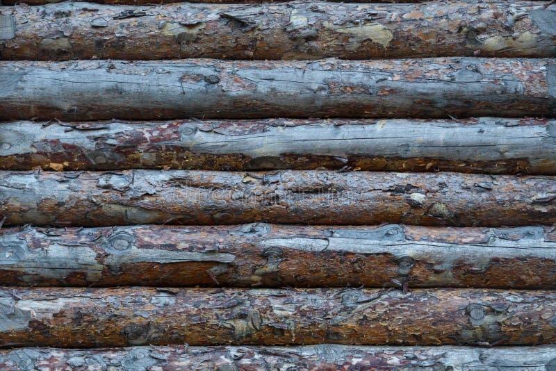 Часть деревянной крепостной стены от сырцовых журналов текстура стоковое фото
