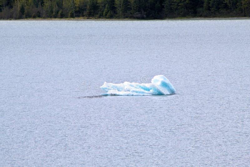 Часть льда плавая на воду стоковые фото