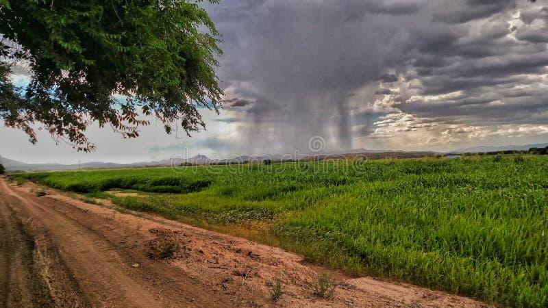 Часть дождя стоковая фотография
