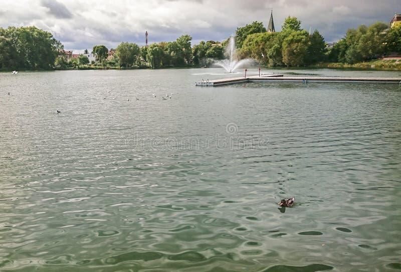 Часть озера замк в городке Walcz, Польши стоковое изображение rf