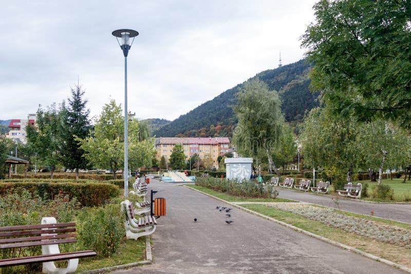 Часть парка роз в городе Brasov в Румынии стоковая фотография