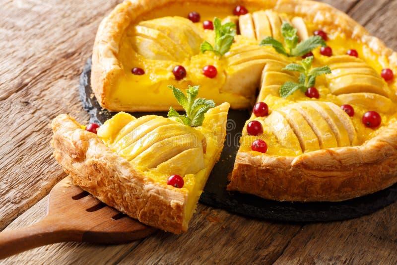 Часть пирога клюквы очень вкусного яблока с концом-вверх заварного крема Ho стоковое фото rf