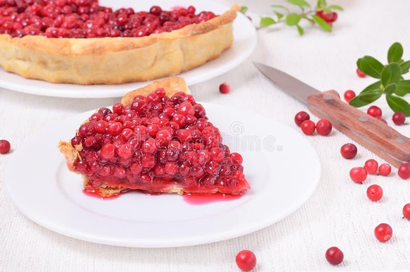 Часть пирога cowberry на белой плите стоковая фотография rf
