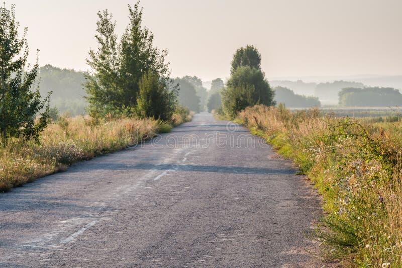 Часть сельской дороги и туманного утра стоковое фото