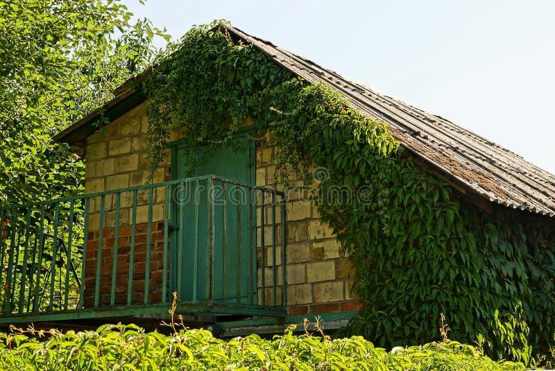 Часть старого дома кирпича при дверь чердака и железный балкон перерастанные с зелеными вегетацией и листьями стоковые изображения