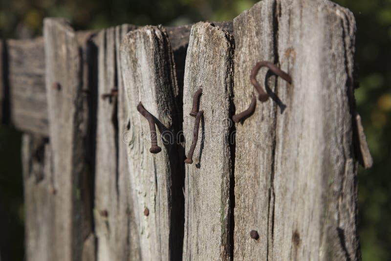 картинки забор с гвоздями критикуют манеру одеваться