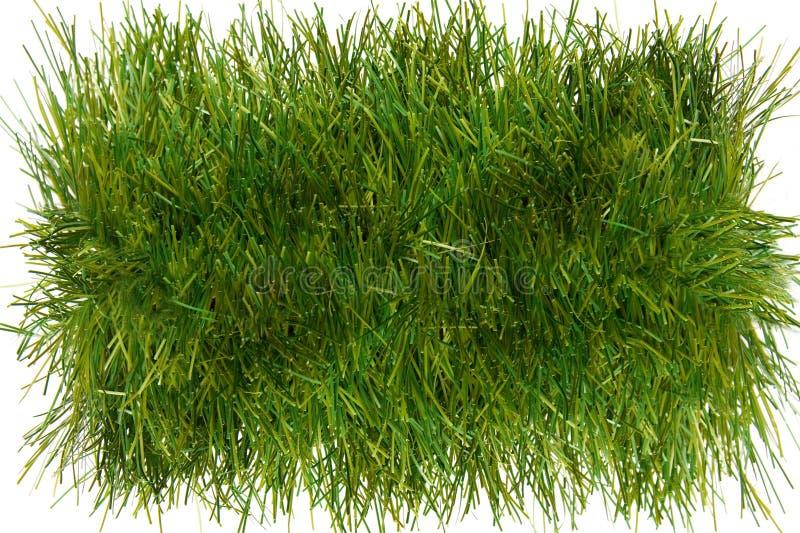 часть травы стоковая фотография rf