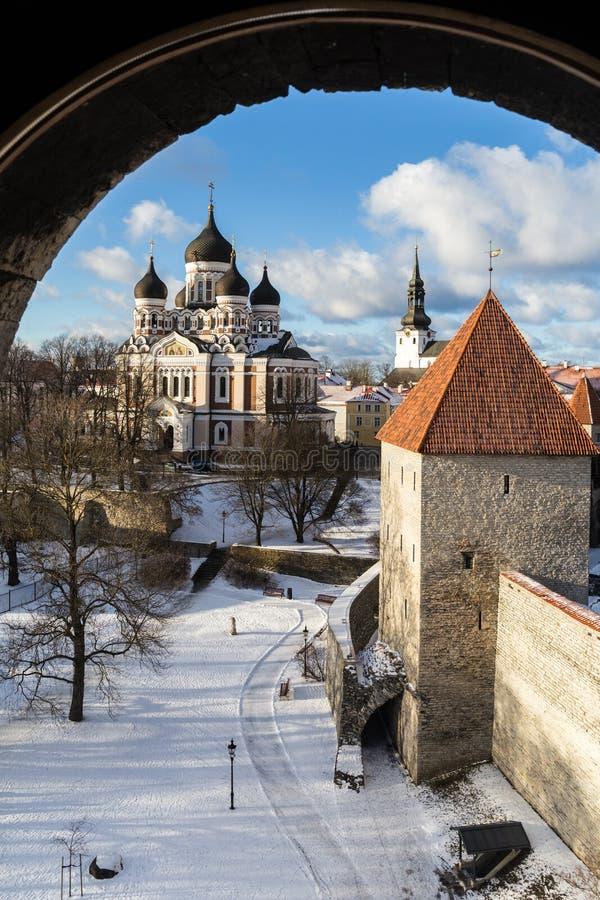 часть nevsky tallinn стран собора Александра прибалтийская стоковые изображения
