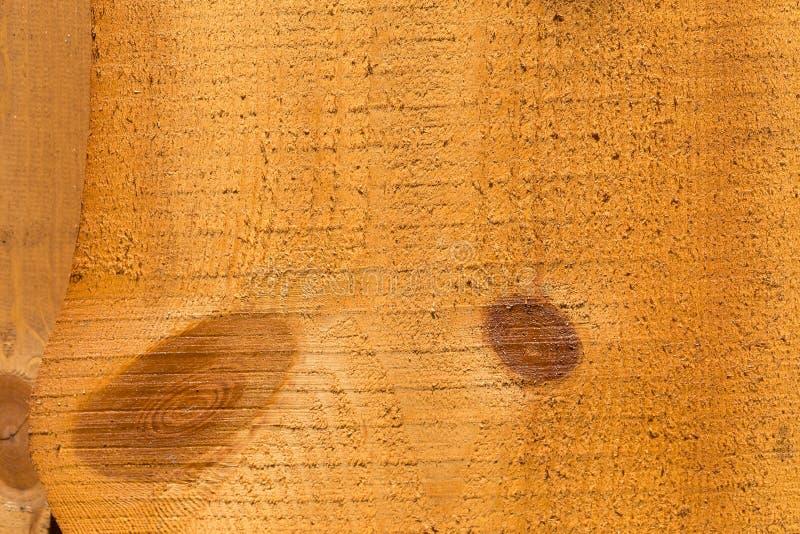 Часть uncolored грубой деревянной загородки с узлами различных форм текстурировано стоковая фотография rf