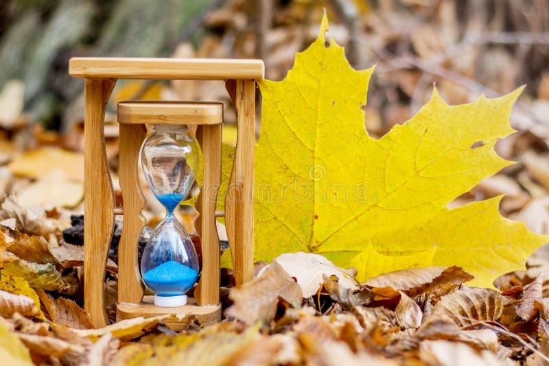 Часы песка и большой желтый кленовый лист в forest_ осени стоковые фото