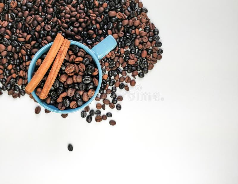 Чашка голубого кофе, с кофейными зернами окружая, и 2 ручки циннамона, с пустым пространством r стоковая фотография rf