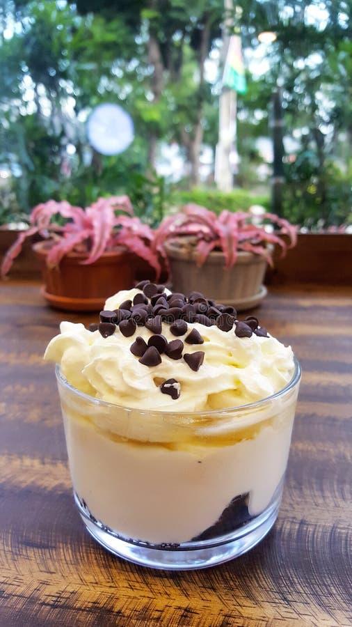 Чашка греческих parfaits югурта с обломоком шоколада и crea хлыста стоковое изображение rf