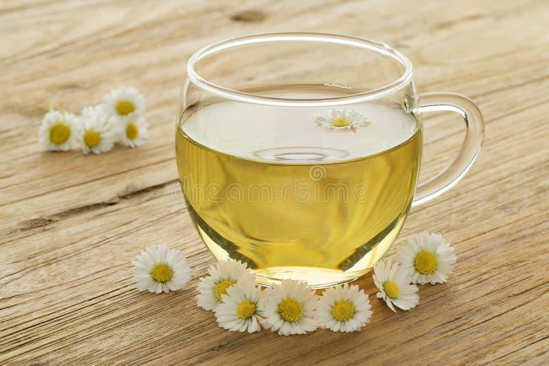 Чашка здорового чая маргаритки стоковая фотография rf