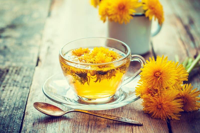 Чашка здорового чая одуванчика как обрабатывать perforatum микстуры hypericum нажатия эффективный травяной как раз стоковая фотография