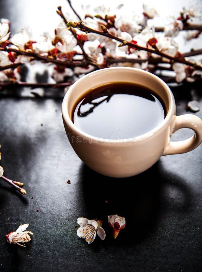 Чашка кофе и розовые вишневые цвета Цветы стоковые фото