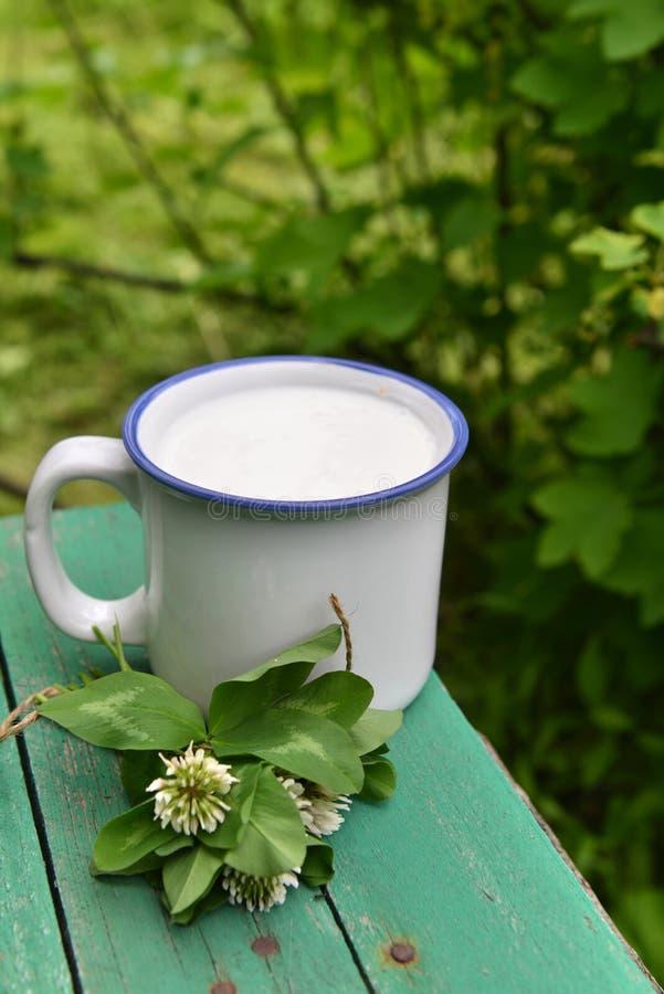 Чашка молока с пуком клевера над предпосылкой лета стоковое изображение