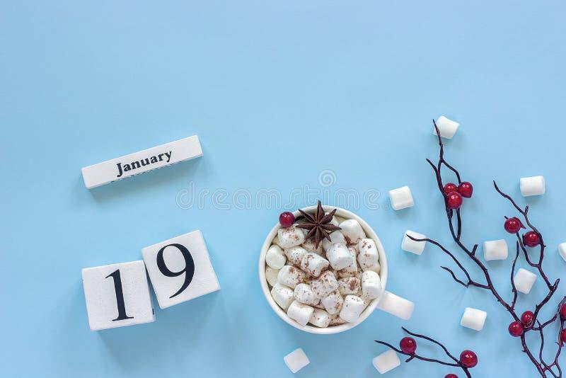 Чашка 19-ое января календаря какао, зефиров и ягод ветви стоковое изображение
