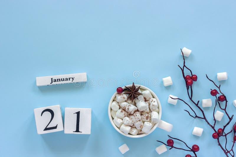 Чашка 21-ое января календаря какао, зефиров и ягод ветви стоковое фото rf
