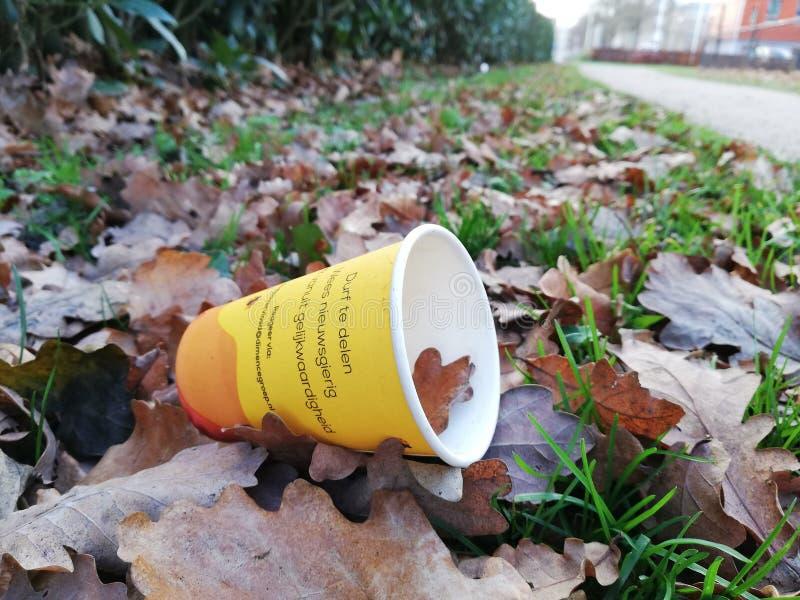 Чашка погани в траве стоковые изображения