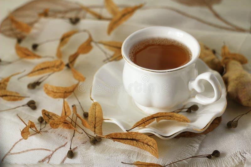 чашка цветет чай липы стоковые фотографии rf