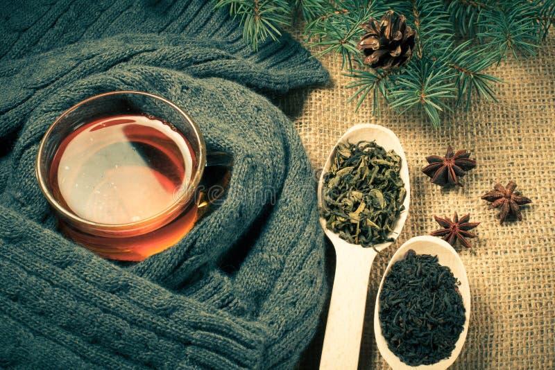 Чашка чаю в оболочке вверх в шарфе шерстей и деревянных ложках с сухими листьями чая стоковое фото rf