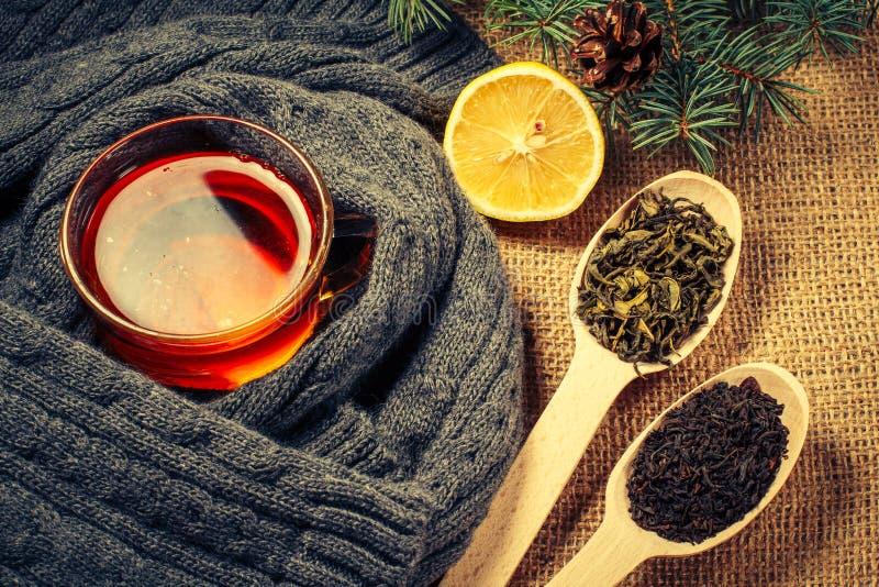 Чашка чаю в оболочке вверх в шарфе шерстей, отрезанном лимоне и деревянных ложках с сухим чаем стоковое фото rf