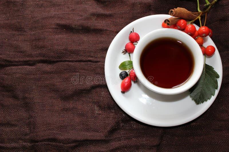 Чашка чаю осени с различными ягодами стоковые фото