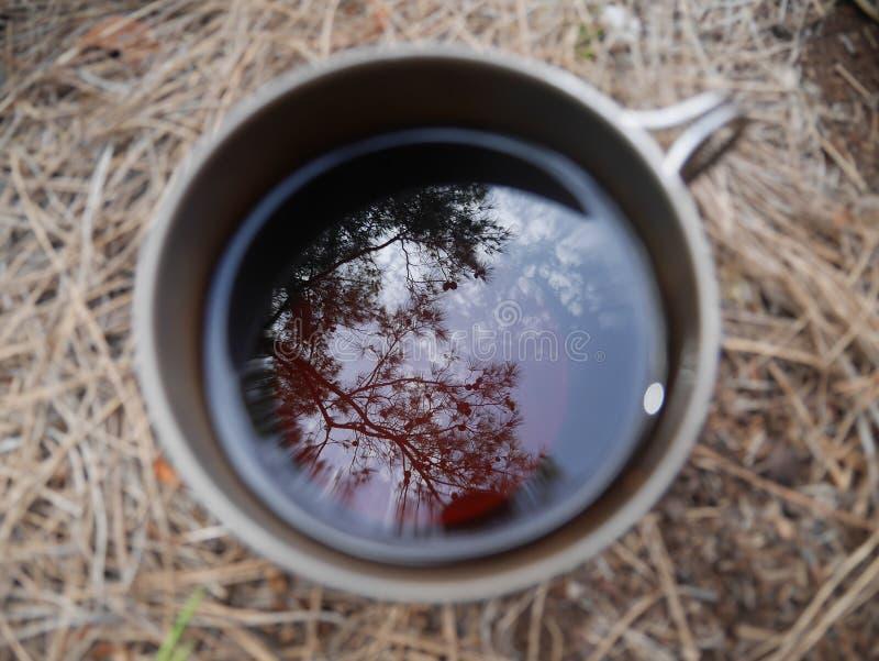 Чашка чаю с blured предпосылкой сена стоковое фото