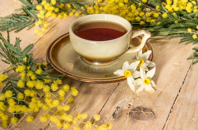 Ветка мимозы чашечка кофе фото