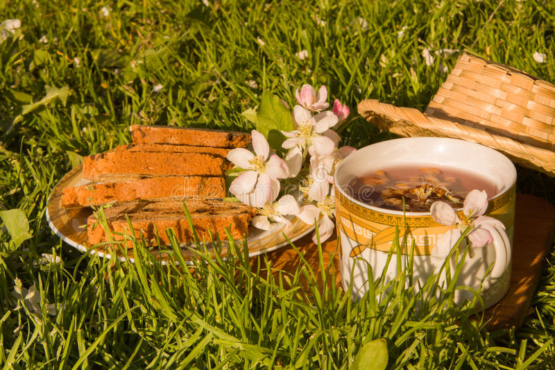 Download Чашка чая плодоовощей и зацветая цветок яблока на Backgrou зеленой травы Стоковое Изображение - изображение насчитывающей флора, торты: 40577301