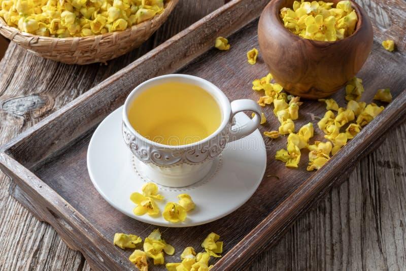 Чашка чая mullein со свежими цветками verbascum стоковое изображение