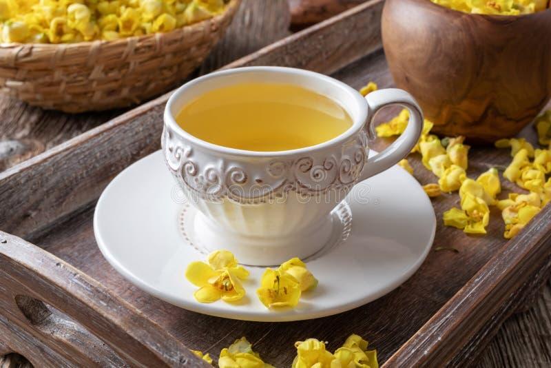 Чашка чая mullein со свежим зацветая verbascum стоковые фотографии rf