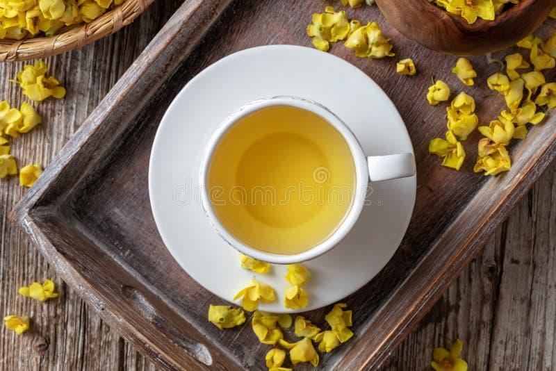 Чашка чая mullein со свежим verbascum, взглядом сверху стоковая фотография rf