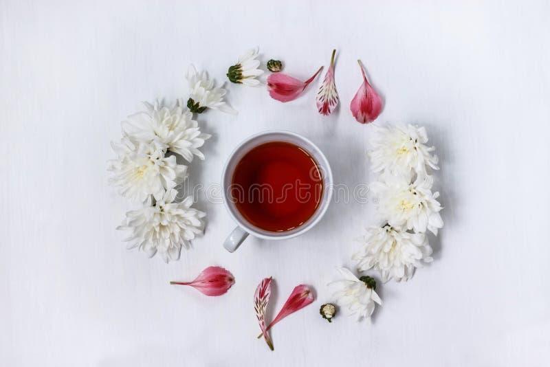 Чашка черного чая в круге белых хризантем на белой предпосылке стоковая фотография rf