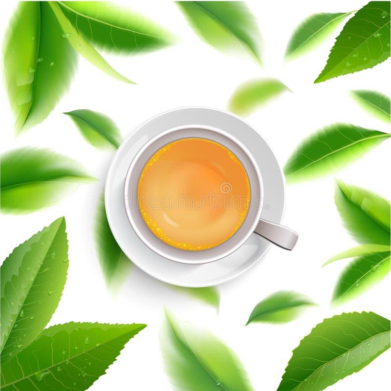 Чашка черного чая при изолированные листья мяты бесплатная иллюстрация